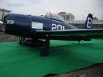 Coppia ali F8 Bearcat CY8032