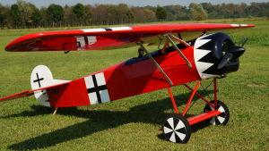 """Fokker DVIII - 110"""""""